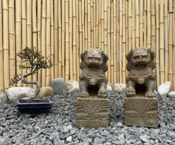 Chinesische Tempellöwen (25cm) aus Naturstein