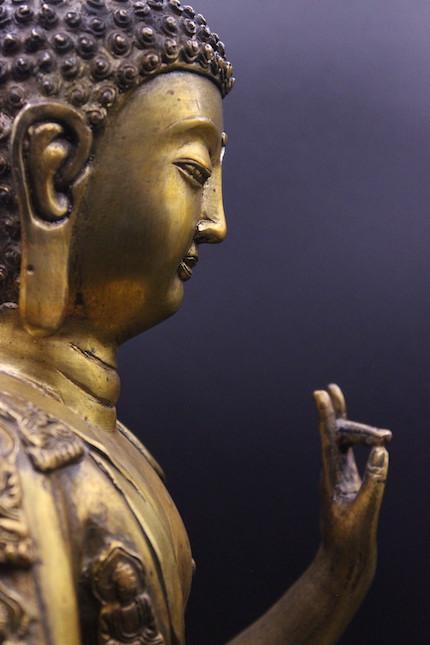 buddhy