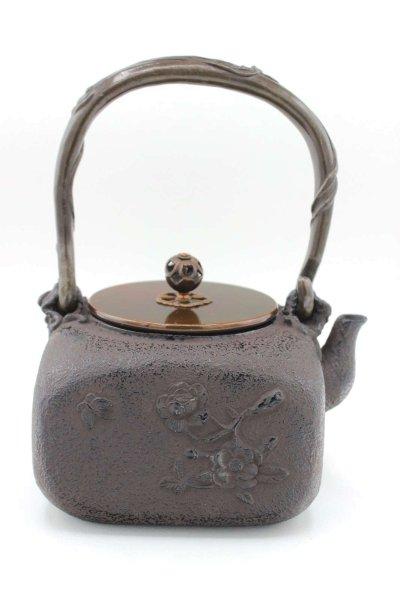 Asiatische Gusseisen Teekanne (21cm) China Deko Kanne