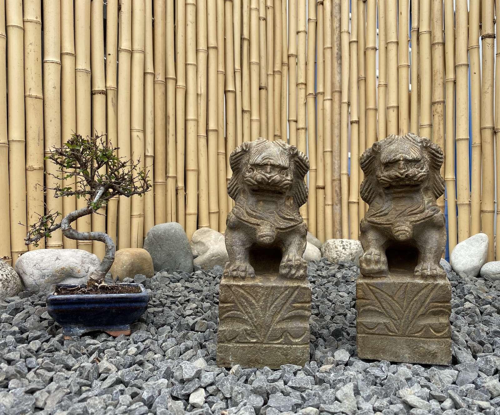 Chinesische Tempellöwen 25cm aus Naturstein